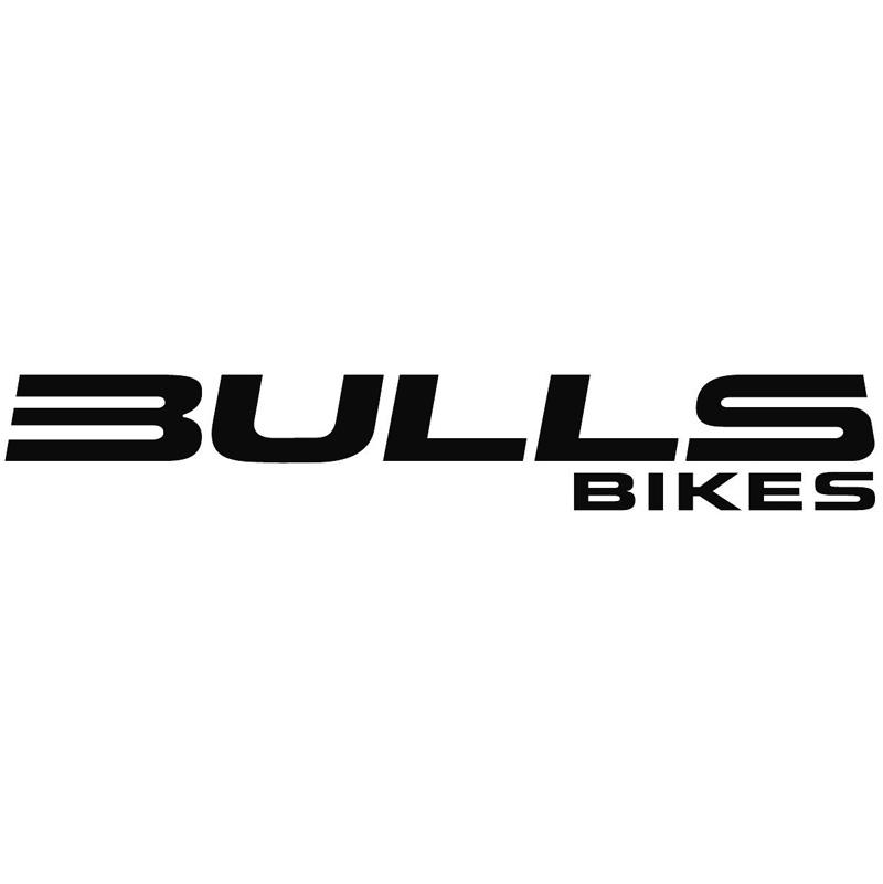 max_Bulls_Logo
